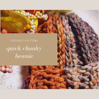 Quick Chunky Beanie - Free Crochet Pattern